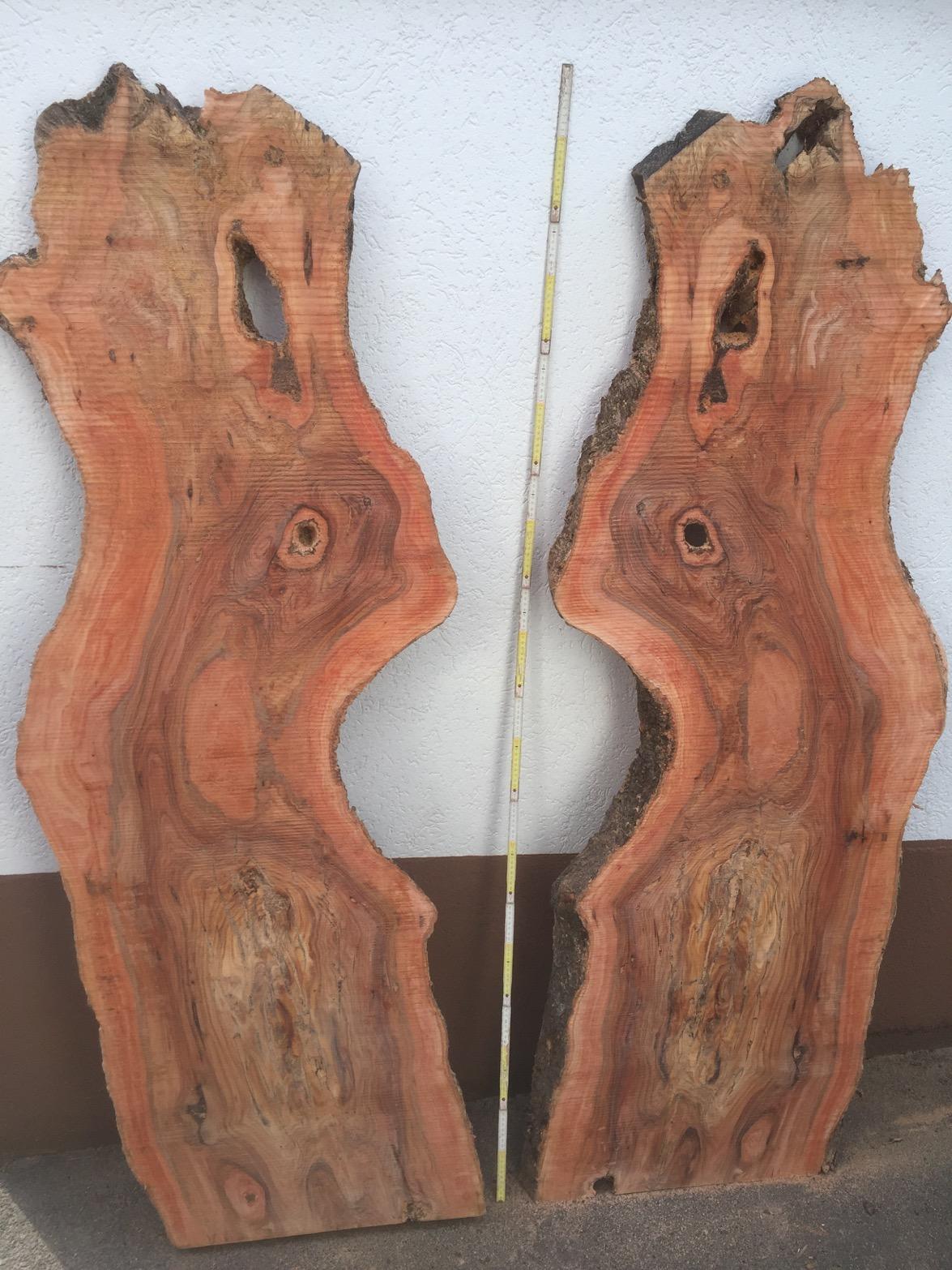 Holzbretter Mit Rinde ganze olivenholz stämme stammstücke stammscheiben deko stücke